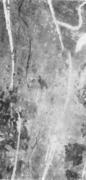 Извилистая трещина на поверхности толстого листа