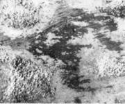 Вкатанная окалина в толстом листе