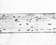 Поры на поверхности четырехгранника, полученного волочением.