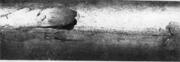 Крупные отслоения на поверхности волоченого прутка, обнаруженные после волочения