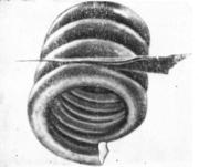 Отслоения в результате разрушения раковины при навивке пружинной  проволоки