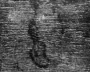Раковина на стальном слитке спокойной стали