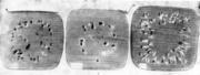 Контуры раковин на поперечных разрезах головной. средней и донной частей слитка