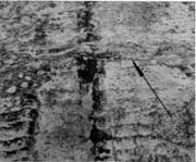 Поперечная трещина на поверхности непрерывнолитой заготовки