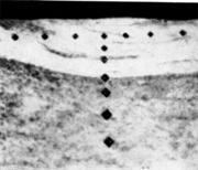 Микроструктура участка трубы с отпечатками от измерения микротвердости