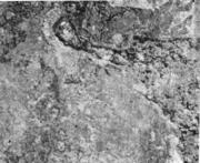 Нерегулярно распределенные брызги на поверхности непрерывнолитой заготовки