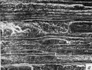 Микрофрактограммы волокнисто-полосчатого излома. Катаная сталь. Для излома харак