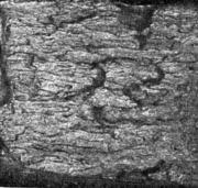 Волокнисто - чешуйчатый  излом . Катаная сталь. Излом вертикального образца (пов