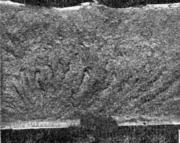 Кристаллический излом (зерно номера 7—9) катаной стали с нечетко выраженными при