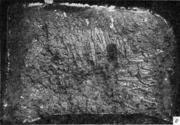 Дендритный излом. Дендриты расположены под поверхностным слоем отливки на глуби