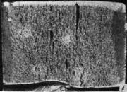 Белые пятна в из¬ломе (Сталь 30Х2НМ)  катаная сталь