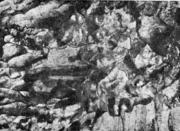 . Первичный камневидный излом литой стали, полученный после медленного затвердев
