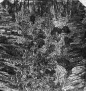 . Макроструктура литой стали, соответствующая излому, приведенному выше
