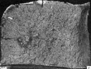 Усадочная рыхлость в изломе. Литая сталь: рассредоточенная  усадочная рыхлость н