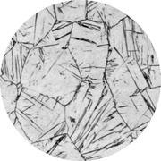 Микроструктура. Сталь для отливок легированная, аустенит, цементит