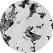 Микроструктура конструкционной стали: феррит, перлит, бейнит