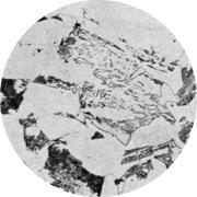 Микроструктура конструкционной стали: феррит, перлит, бейнит, мартенсит