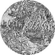 Микроструктура конструкционной стали: феррит, аустенит, бейнит, мартенс