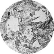 Микроструктура конструкционной стали: бейнит, мартенсит, феррит