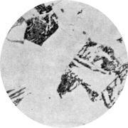 Микроструктура стали  А4: феррит, перлит, бейнит, мартенсит
