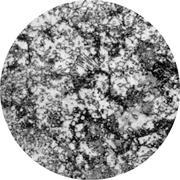 Микроструктура стали  9Х2: аустенит, перлит, феррит, цементит