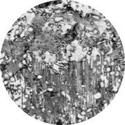 Микроструктура стали  9Х2: перлит, аустенит, карбиды