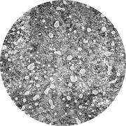 Микроструктура стали  9Х2: мартенсит
