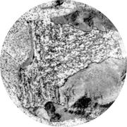 Микроструктура стали 10Х2М1 : феррит, перлит, карбиды, бейнит