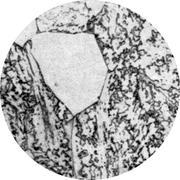 Микроструктура стали 10Х2М1 : феррит, бейнит, мартенсит, карбиды