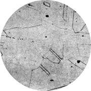 Микроструктура стали 06Х18Н11: аустенит